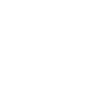 Evosonic